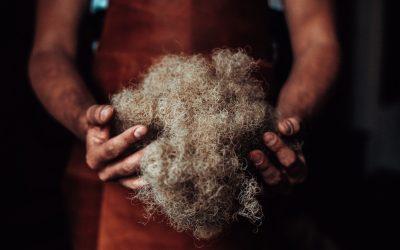 Rosshaar – Ein tolles Naturprodukt